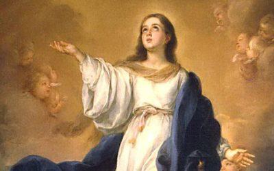 Santa María modelo y guía en la tarea de pensar