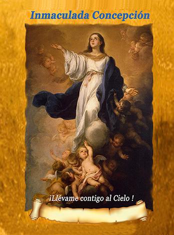 Lamina Inmaculada Concepción
