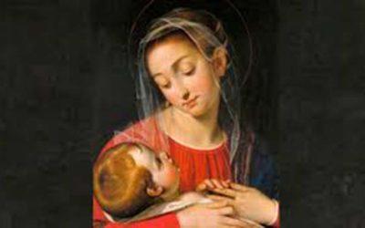 Santa María Instrumento de la Divina Bondad